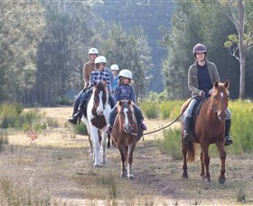 Horse Riding at Oaks Ranch and Country Club - Accommodation Mount Tamborine