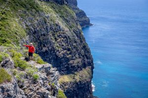 Seven Peaks Walk at Pinetrees Lord Howe Island - Accommodation Mount Tamborine