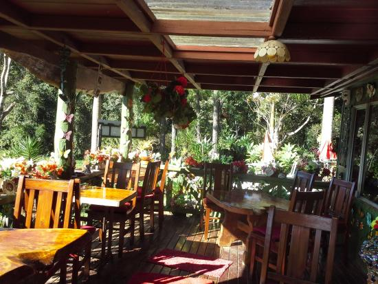 Suzannes's Hideaway Cafe - Accommodation Mount Tamborine