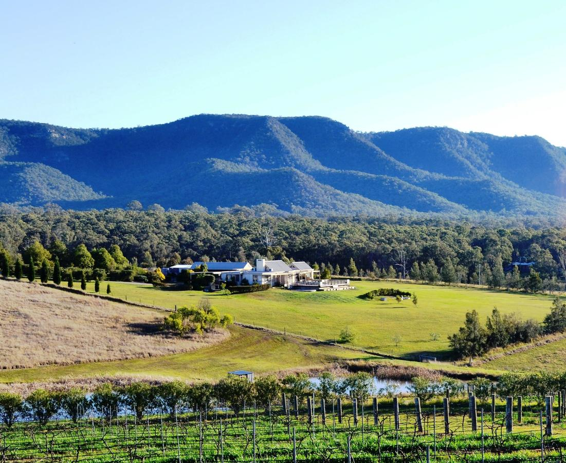 Grapevines Boutique Accommodation - Accommodation Mount Tamborine