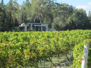 Just Red Wines Cabins - Accommodation Mount Tamborine