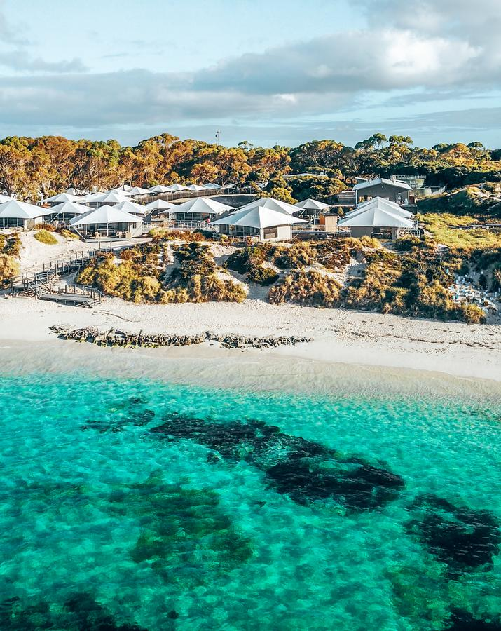 Discovery Rottnest Island - Accommodation Mount Tamborine