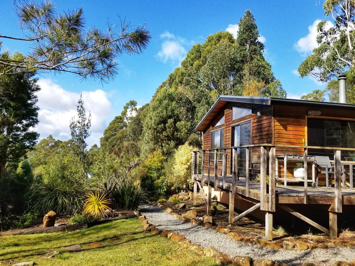 Southern Forest Accommodation - Accommodation Mount Tamborine