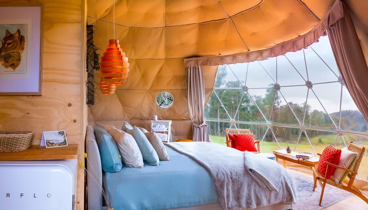 Domescapes in the Vines - Accommodation Mount Tamborine